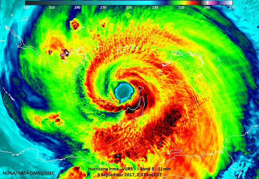 A view of a hurricane in false-color as seen from space.