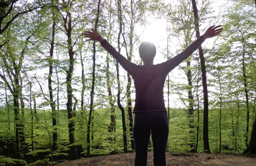A person stretches out to the light in a grove of trees.