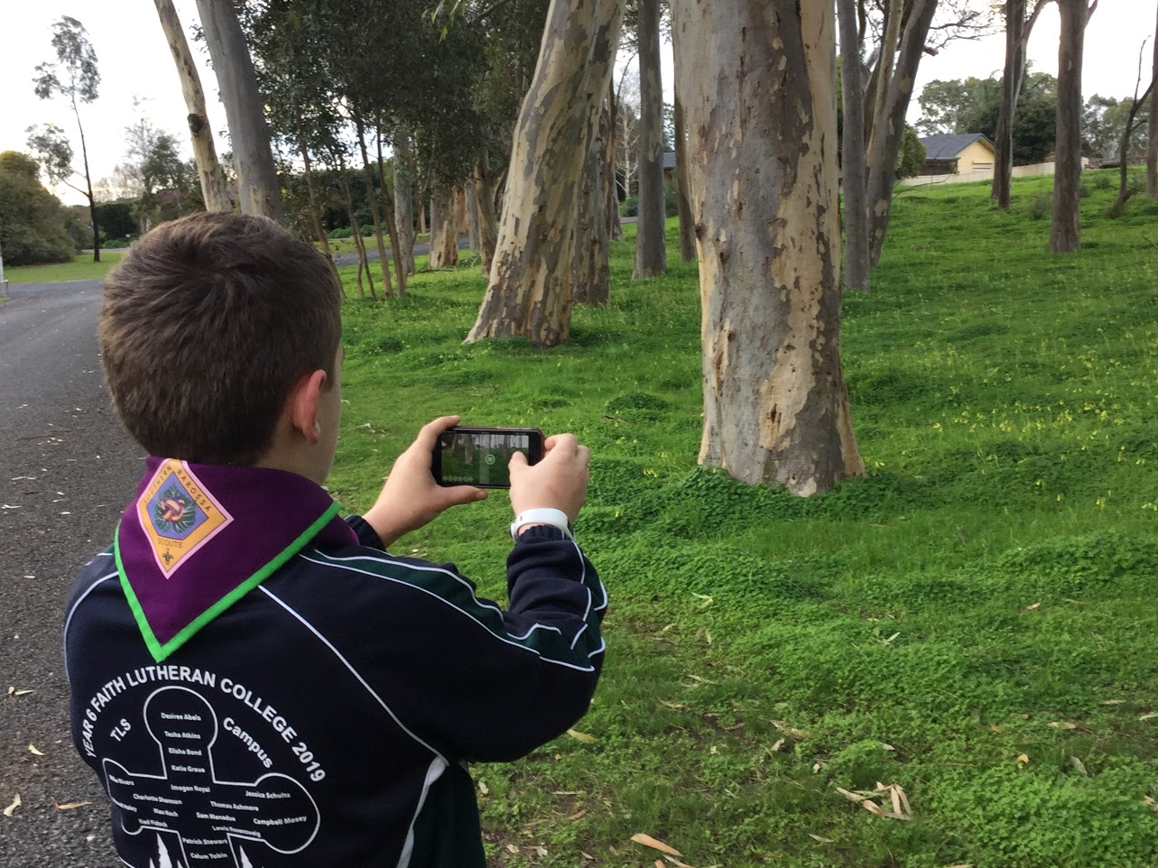 A scout uses the GLOBE Observer app to take a land cover observation