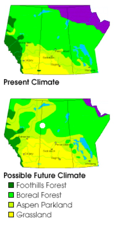 Maps of forests patterns in Canada in the present and with possible future climate changes