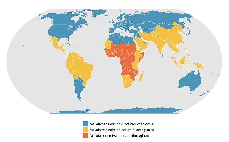 Map of areas with endemic malaria as of 2020.