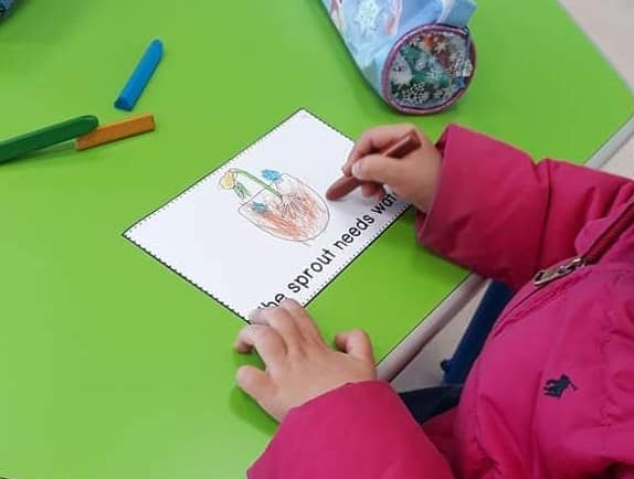 A child's hand coloring a page that says 'The sprout needs water'