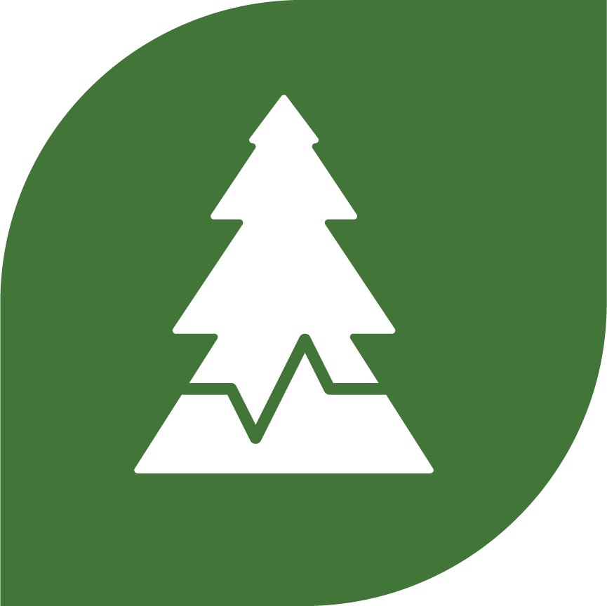 Impacts on Trees Science Journey Logo