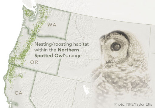 The image of a spotted owl overlaid on a map of the Pacific Northwest
