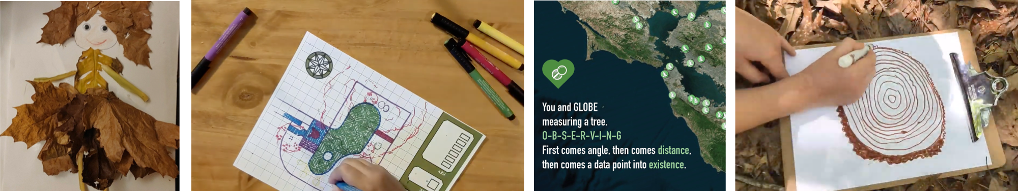 Composite of create activities, from left: art made with leaves, a map of a garden with trees, a tree poem, and a drawing of a tree cookie