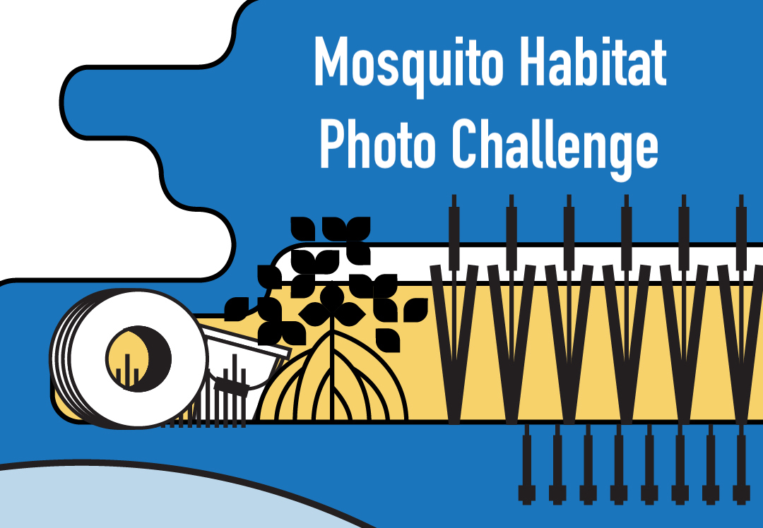 Banner for Mosquito Habitat Mapper Photo Challenge